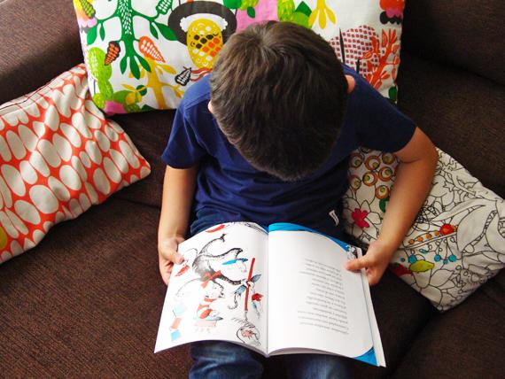 lectura-el-gato-garabato-boolino