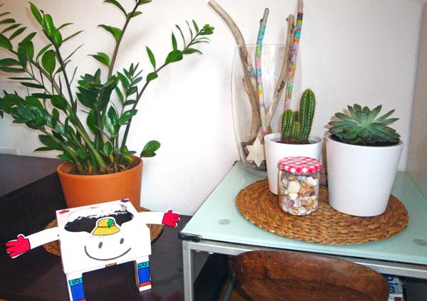 rincon-plantas-low-cost