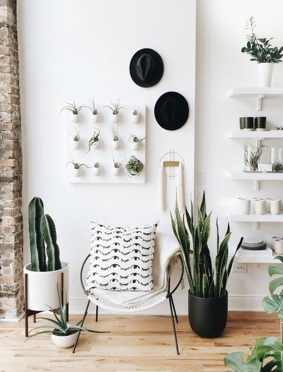 ideas-decoracion-cactus