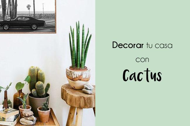 Ideas decorativas: un cactus para tu casa