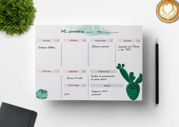 Planificador semanal descargable cactus